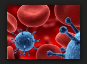 Que es el Virus del Papiloma Humano ??